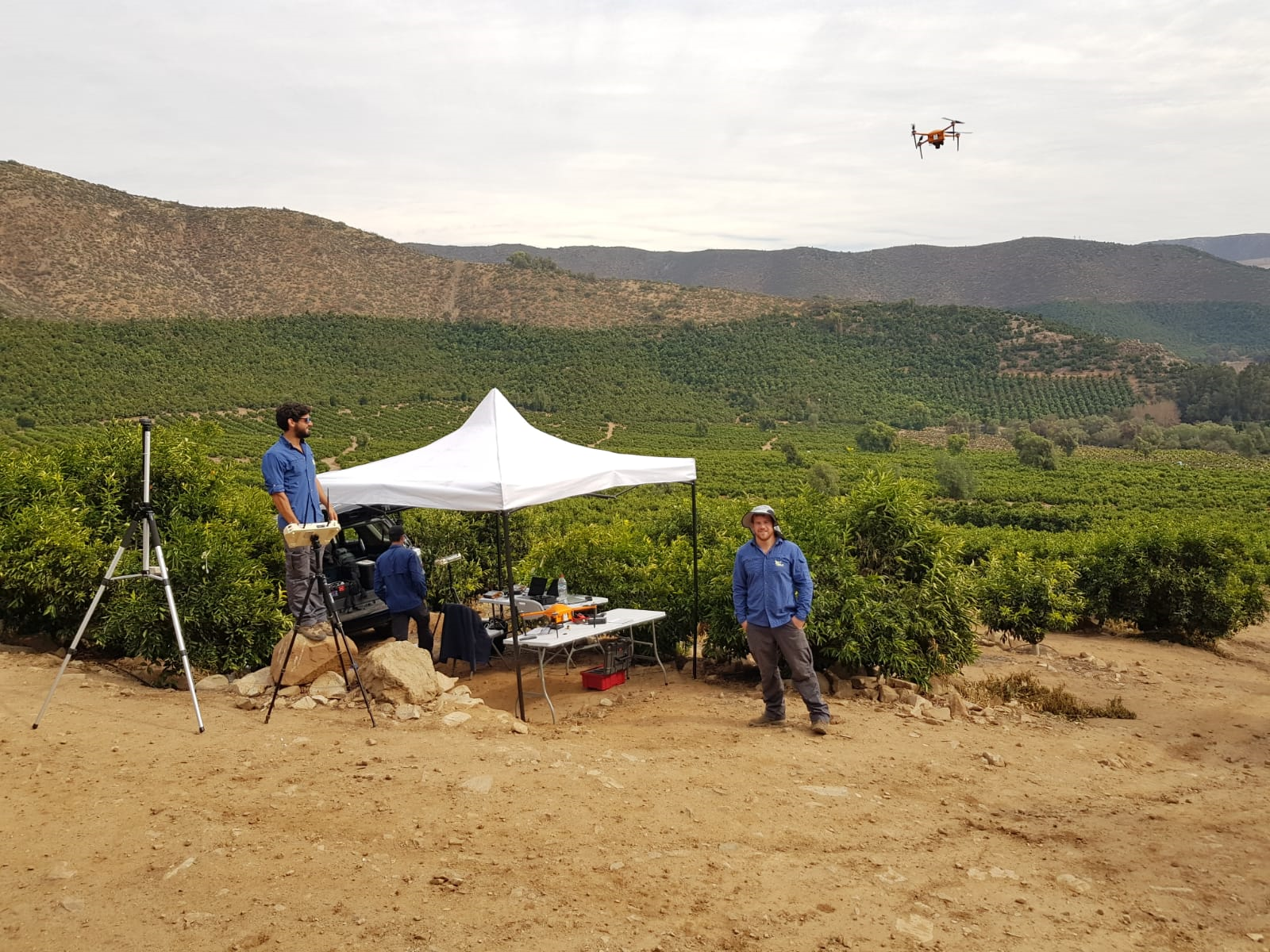 In a nutshell: AI-powered tree doctors mounted on drones