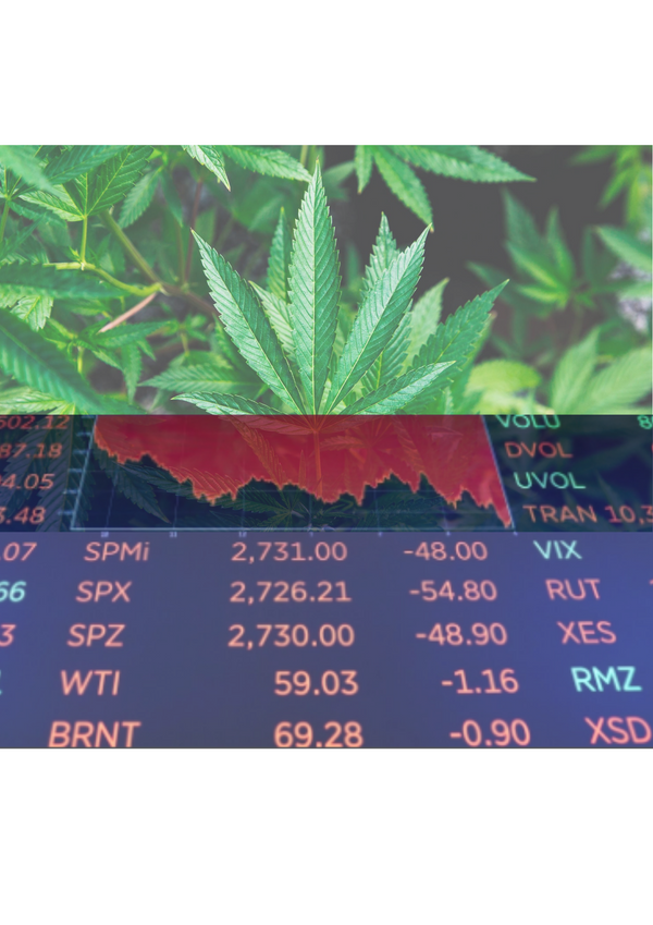 Israeli cannabis provider joins the 'startup stock market' funding channel